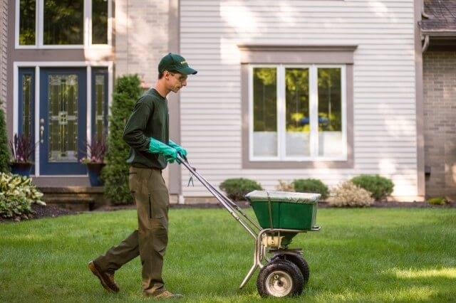 Davey Tree | Best Time to Fertilize Lawn in Fall (Month and Time of Day)