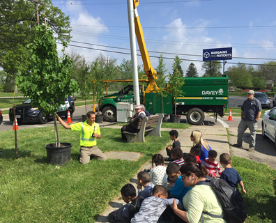 On Arbor Day 2016, Davey Tree planted over 5,750 trees.