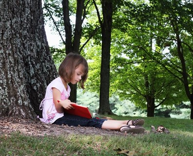 Did you know, in addition to keeping us cool, trees also protect us from UV rays?