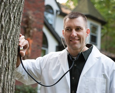 Tree Doctor's in! Learn what plant health care is and why it benefits your trees.