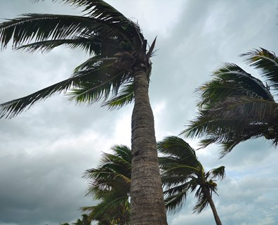 To keep your home safe and minimize damage, prep before the tornado and hurricane season starts.