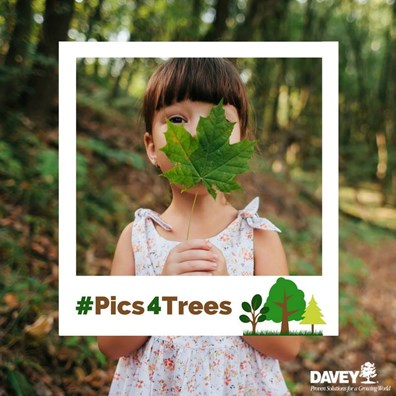Snap a tree picture with the #pics4trees from Earth Day, April 22 to Arbor Day, April 28, 2017, and we'll plant two trees by donating to the Arbor Day Foundation.