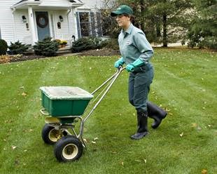 Learn the best time to overseed your lawn in each region.