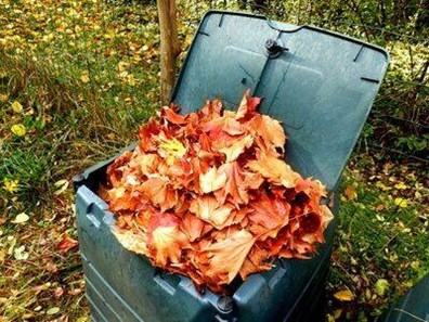 Learn how to compost leaves and grass quickly and how long it takes to compost leaves.
