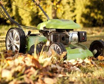 Learn when the last time to cut the grass before winter.