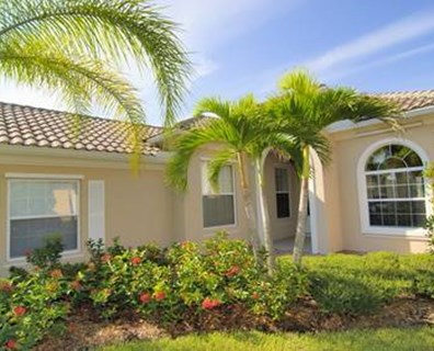 Learn about when to fertilize palm trees in Florida, and what is the best fertilizer for palm trees.