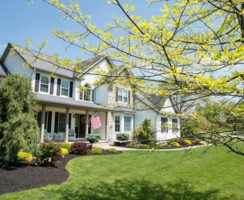 The Best And Worst Trees To Plant Near A House By Zone Davey Blog