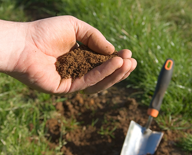 Learn how to perform a soil test and why It is important.