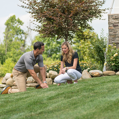 Read through this handy guide for all the tips you need to care for your lawn year-round.