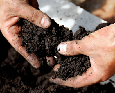 How to Make Good Garden Soil