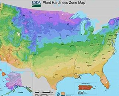 Some regions of the U.S. still have yet to see spring tree buds appear.