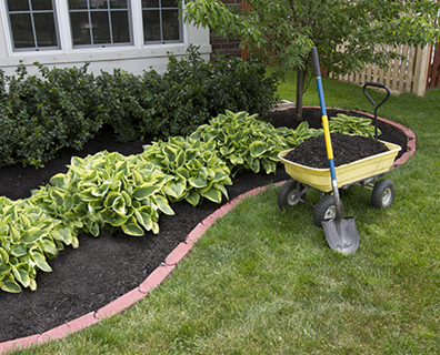 Is Organic Mulch Better for My Trees & Plants
