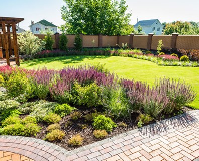 Featured image for Best Way to Deal with Stormwater: Rain Gardens