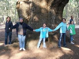 Angel Oak 3