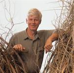 PatrickDoughterty