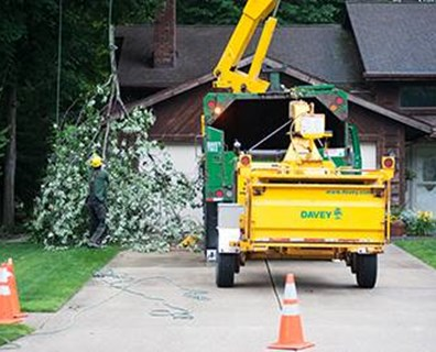 Downed trees, broken limbs and power outages can wreak havoc on your home during storm season, but you can stop the problems before they occur.