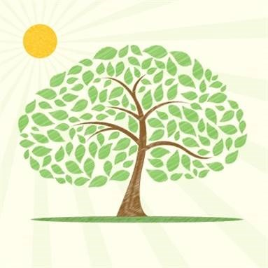 Featured image for Healthy Trees? Check.