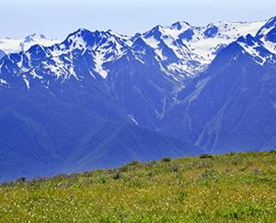 A variety of views and natural settings attract visitors to Olympic National Park in Washington.