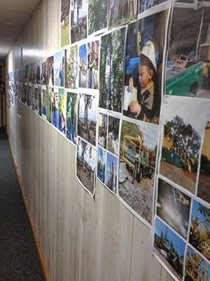 A photo wall containing approximately 100 images of Davey projects covers one of the walls within Davey's San Francisco R/C office, thanks to Assistant District Manager Brian Baker and Sales Arborist Nick Crawford.
