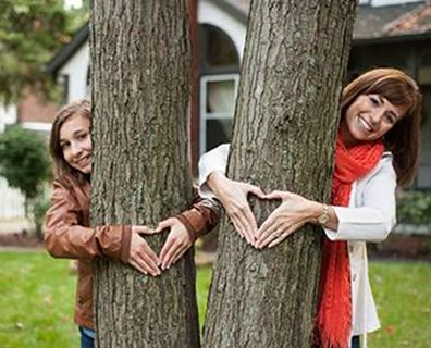 Just as we love and cherish our trees, they shower us with love by benefiting us emotionally, economically and environmentally.