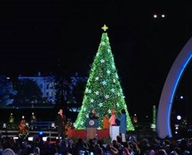 The National Christmas Tree seen shortly after its lights were turned on by the first family. Photo: TheNationalTree.org