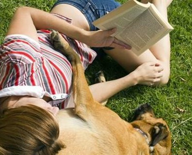 Featured image for The Dog Days of Summer