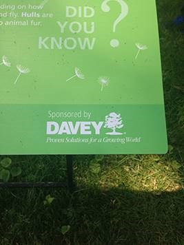 "Guess which larger-than-life LEGO® statue Davey sponsored at the Cleveland Botanical Gardens' ""Nature Connects"" exhibit!"