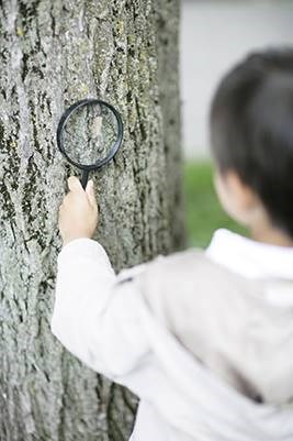 It's official. August is Tree Check Month. So, what are you waiting for? Check out our tree checkup suggestions and get outside to inspect your trees!