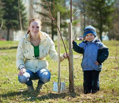 two children planting a tree