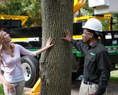 Certified arborists know your trees best. Choose an arborist you can trust with your tree care needs.
