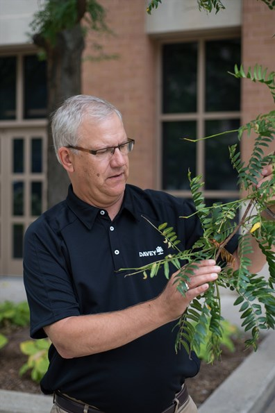 Rex Bastian demonstrates how to inspect a tree's leaves for signs of disease.