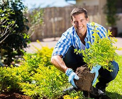 Here's how to plant a tree to protect your tree with Nature's Sunscreen.