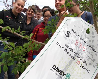 Davey's Emily Hamilton helped YouthBuild volunteers tag a Morton elm tree they planted in the Fall River, Mass., Tree Farm to quantify the benefits it will provide in the future. | Photo: Emily Hamilton