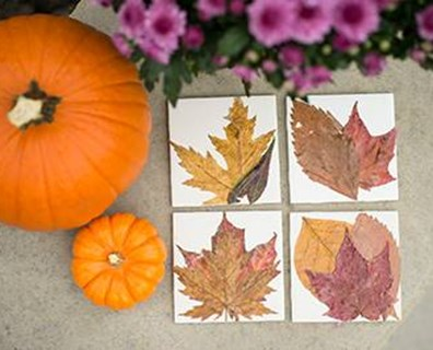 Why not set your warm cup of tea or hot chocolate on these festive, fall leaf coasters? They'd make great additions to your coffee table, and you can make them yourself!