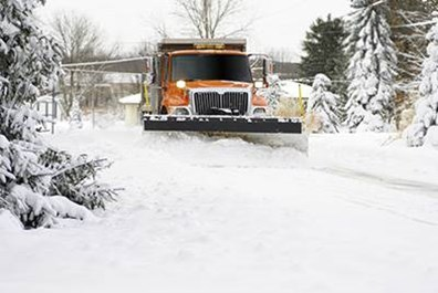 Sometimes snow removal practices can harm your trees--but it's not always the snow itself that harms them.