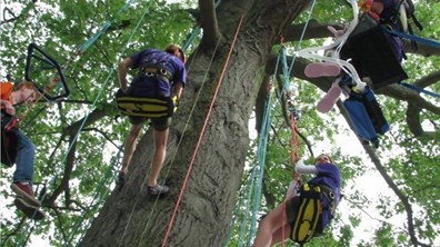 Davey commercial landscape service volunteers boosted children into trees at Fresh Air Camp earlier this year.