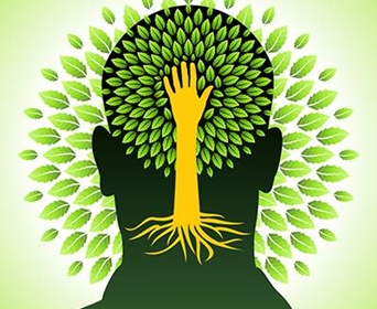 Did You Know Tree Benefits Improve Your Mental Health