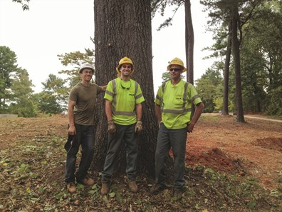 Davey's Atlanta residential tree services crewmembers Daniel Clark, Devon Lucabaugh and Brett Powenski (pictured left to right) gather at the base of a 46-inch Turkeyfoot red oak tree, located adjacent to a proposed Vietnam War Memorial site at Newtown Park in Johns Creek, Georgia.