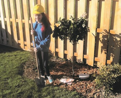 Katlyn Scott, daughter of Davey Foreman Billy Scott, stands next to the tree Davey's Northeast Detroit residential tree services District Manager Dave Bargerstock donated to her donor after Katlyn's heart transplant surgery.