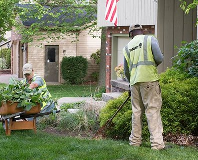 Looking forward to winter's end? The good news is you can starting springing ahead to proper seasonal tree care.