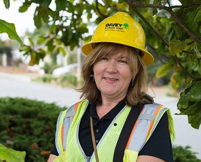 What do you know about urban forestry? Above, Consulting Arborist Lori Murphy performs a tree inventory in El Cerrito, California.