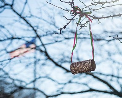 Looking for more birds and other wildlife in your backyard this spring? Give them more reasons to stop by and create this simple recycled bird feeder!