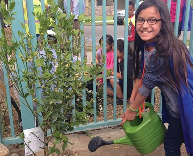 Superheroes help plants, too! Here, a student waters a tree a Davey Resource Group employee helped plant on Arbor Day in 2014.