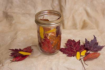 fall craft fall leaf mason jar craft