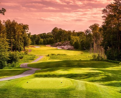 Unfortunately, emerald ash borer can negatively affect the character of a golf course and the play of the game. The good news? There are ways to help prevent further damage in infested areas.